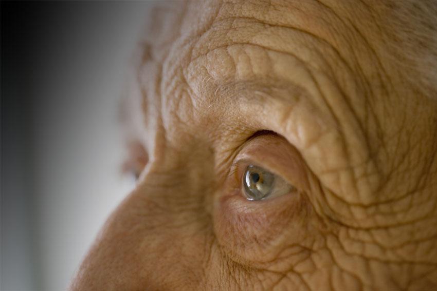 מבצע סבבתא בבית שמש בעקבות הקורונה (צילום אילוסטרציה: א.ס.א.פ קריאייטיב INGIMAGE)