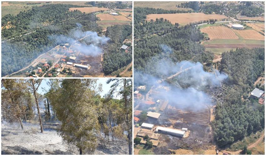 השריפות בשטחים הפתוחים בסוף השבוע באזור בית שמש (צילומים: כבאות והצלה)