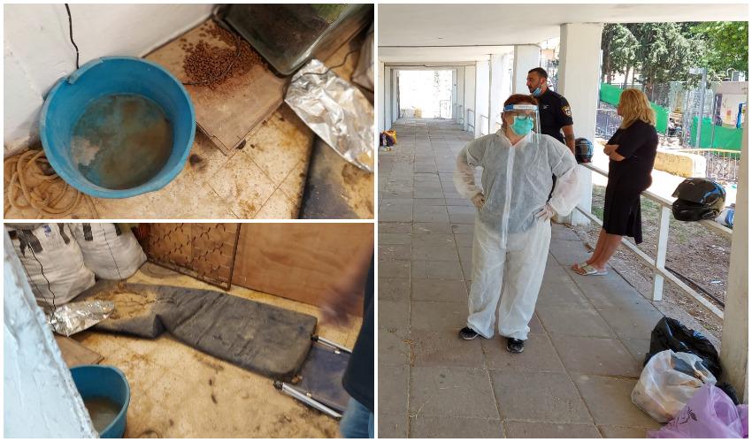 """ד""""ר מאיה קמחי בפשיטה על המחסן, הלכלוך והזוהמה שבהם הוחזקו הכלבות (צילומים: עיריית בית שמש)"""