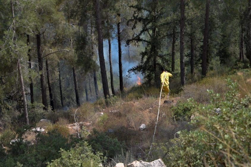 השריפה סמוך לכביש 386 (צילום: דוברות כבאות והצלה)