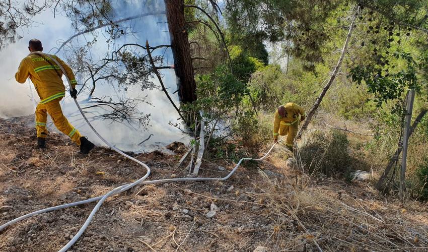 השריפה ליד מושב זנוח (צילום: דוברות כבאות והצלה)
